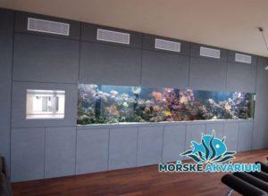 morske-akvarium-__25